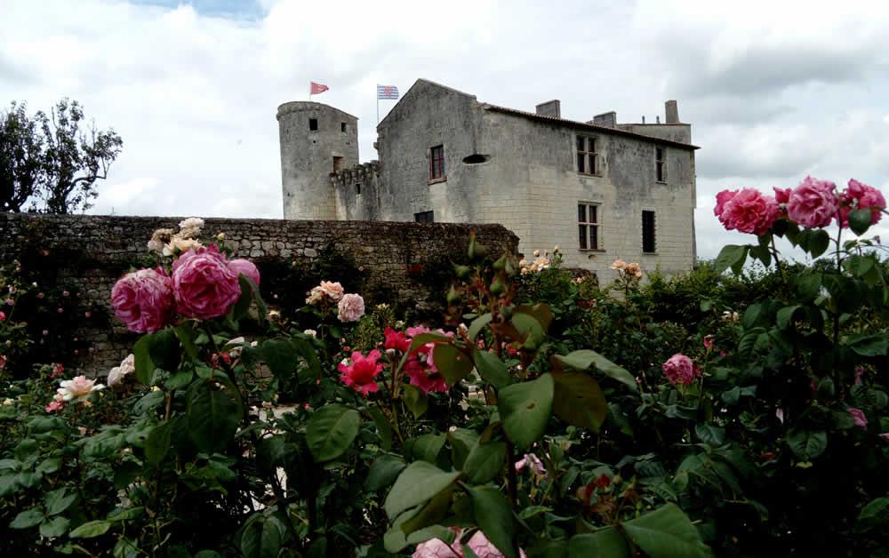 chateau de saint-jean d'angle